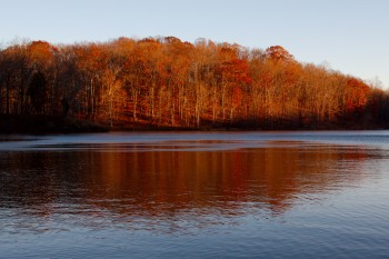Lake Needwood