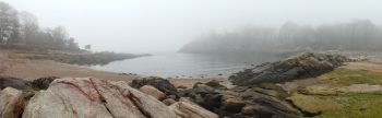 Lobster Cove