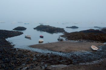 Foggy Harbor, Marblehead, Massachusetts