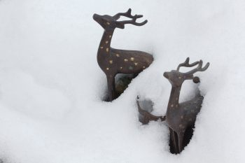 Deer Figurines in the Snow