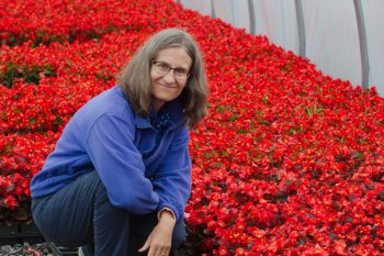Cathy and Begonias