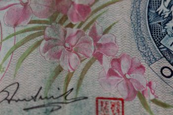 Orchids on Singapore Dollar Note