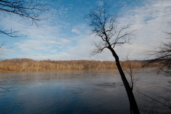 Potomac River from Turkey Run Park