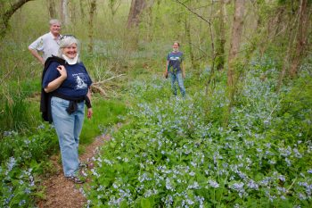 Bluebells with Rob and Susie