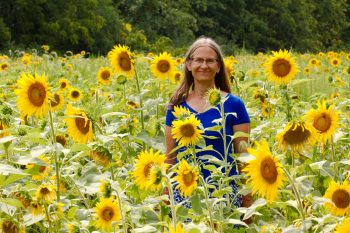 Cathy Amidst The Sunflowers
